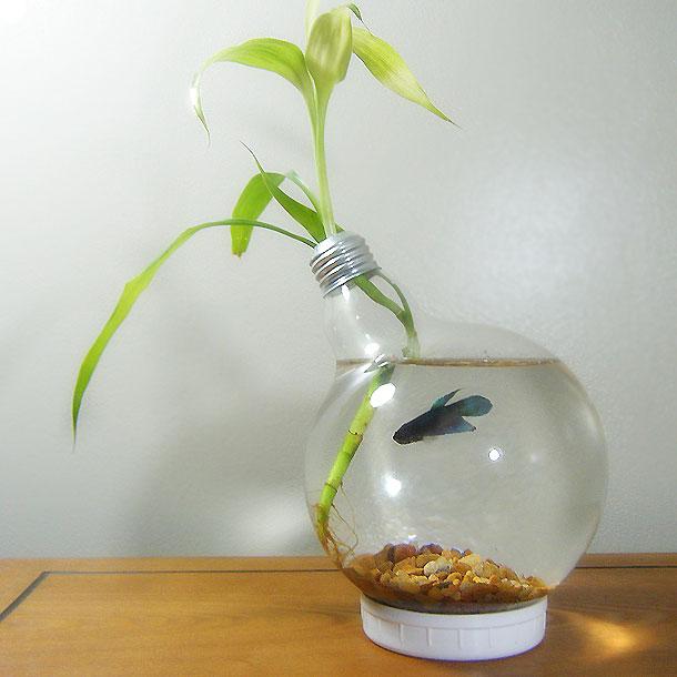 recycler-vieilles-ampoules-22