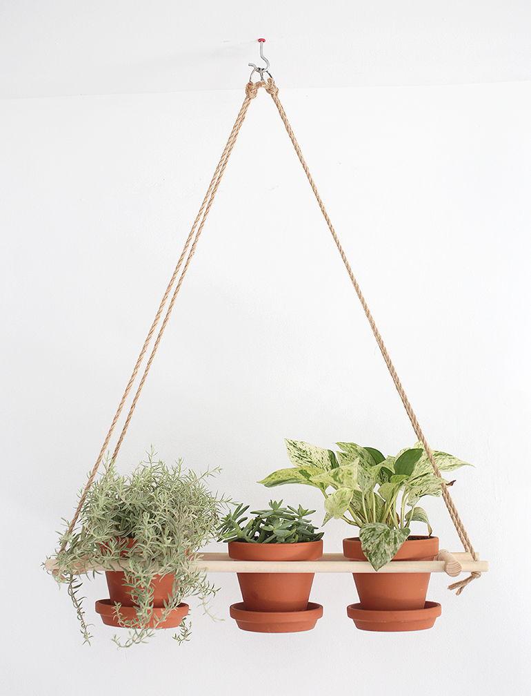 suspensions-pour-plantes-18