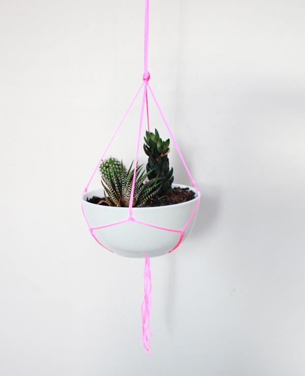 suspensions-pour-plantes-5