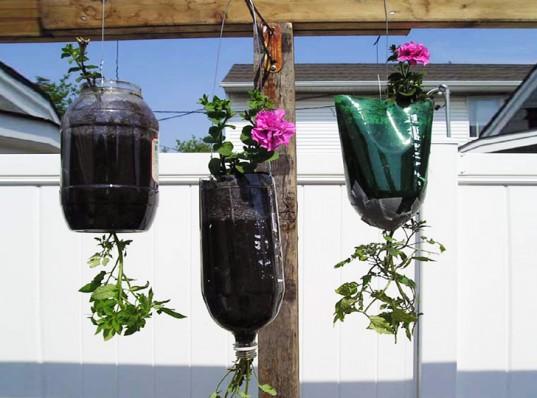 15+ Idées Créatives pour Décorer une Suspension de Plantes