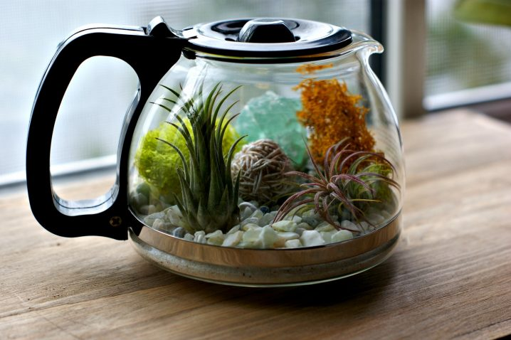 terrariums-decoratifs-1