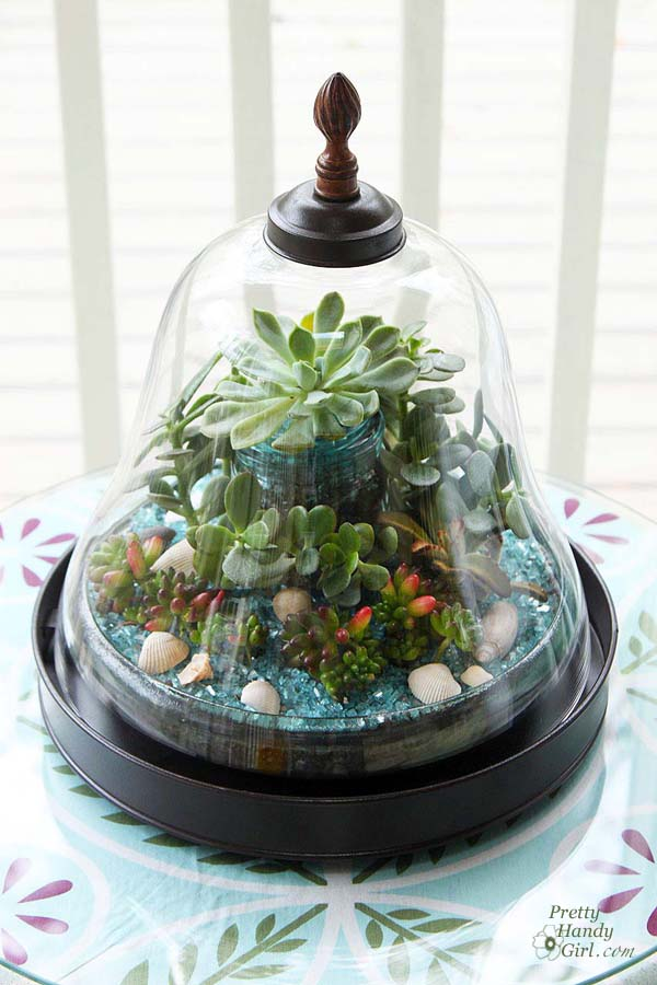 terrariums-decoratifs-13