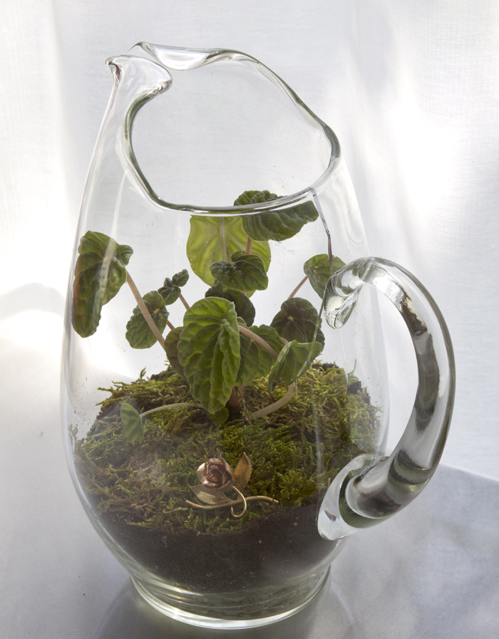 terrariums-decoratifs-17