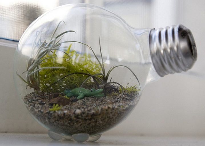 terrariums-decoratifs-19