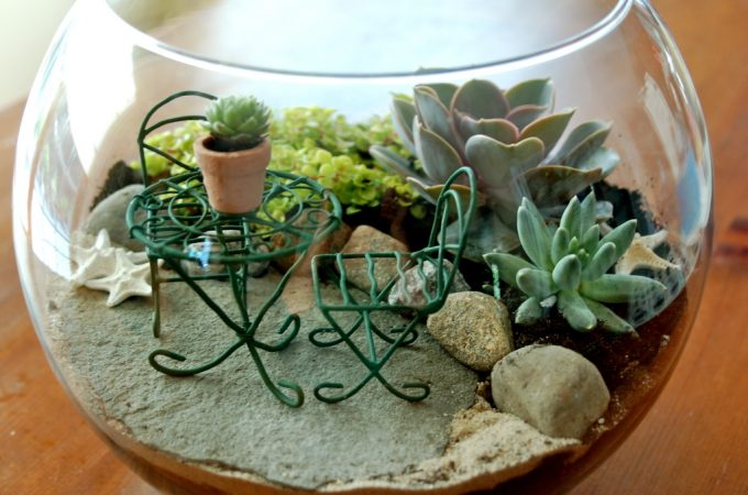terrariums-decoratifs-6