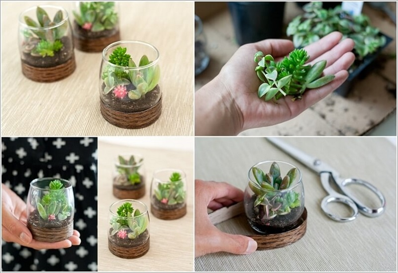 terrariums-decoratifs-7