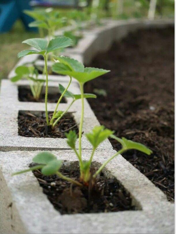 decorer-jardin-blocs-de-betons-14
