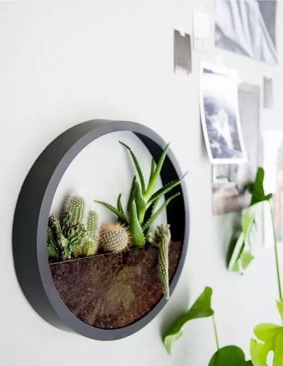 15+ Les Plus Belles Idées de Terrarium Qui Sont Simplement Incroyable  15+ Les Plus Belles Idées de Terrarium Qui Sont Simplement Incroyable
