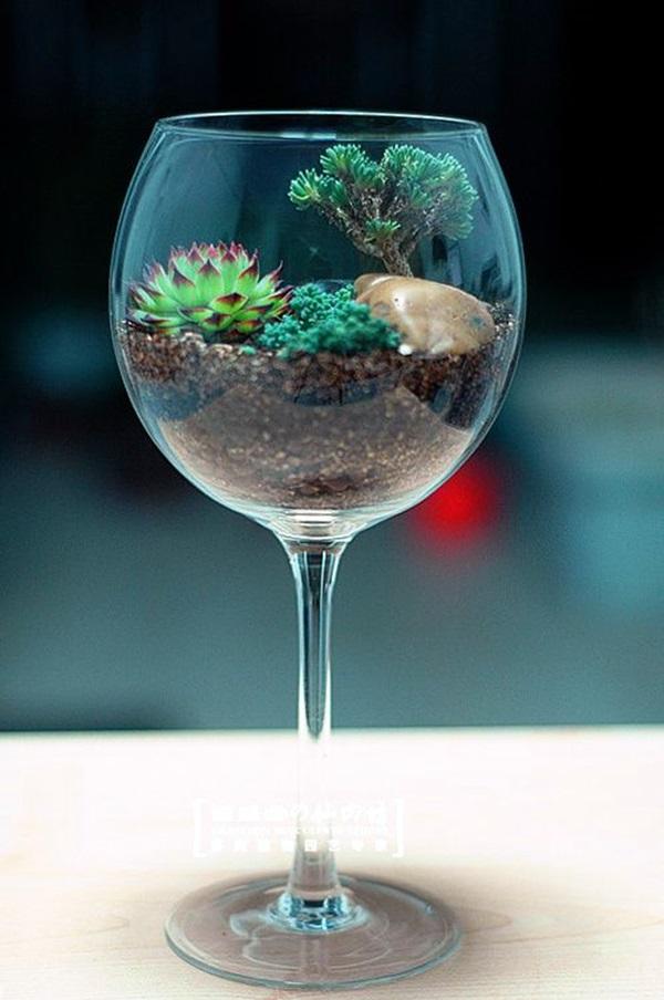 idees-de-terrarium-20