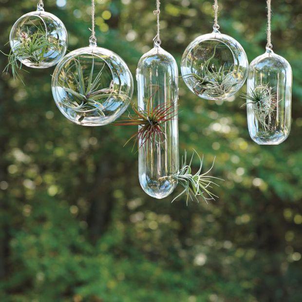 idees-de-terrarium-4