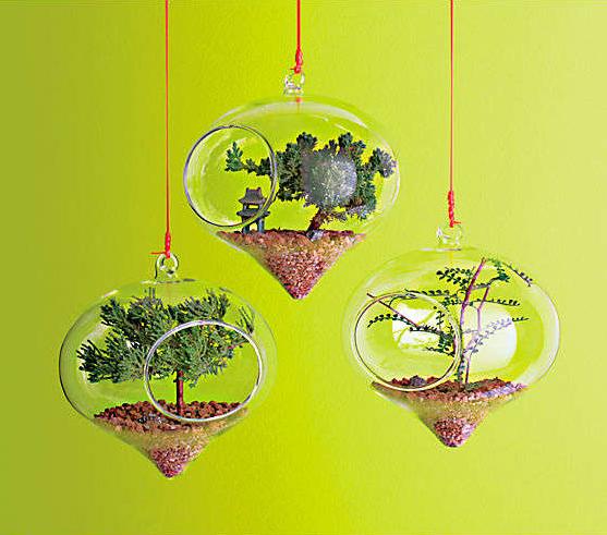 idees-de-terrarium-9