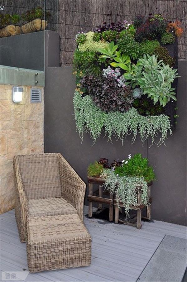 jardin-balcon-verticale-15