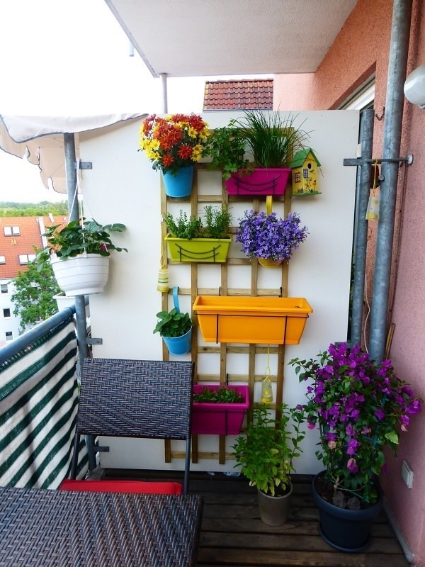 20+ Magnifiques Jardins Verticaux Pour Votre Balcon  20+ Magnifiques Jardins Verticaux Pour Votre Balcon  20+ Magnifiques Jardins Verticaux Pour Votre Balcon  20+ Magnifiques Jardins Verticaux Pour Votre Balcon  20+ Magnifiques Jardins Verticaux Pour Votre Balcon  20+ Magnifiques Jardins Verticaux Pour Votre Balcon  20+ Magnifiques Jardins Verticaux Pour Votre Balcon  20+ Magnifiques Jardins Verticaux Pour Votre Balcon  20+ Magnifiques Jardins Verticaux Pour Votre Balcon  20+ Magnifiques Jardins Verticaux Pour Votre Balcon  20+ Magnifiques Jardins Verticaux Pour Votre Balcon  20+ Magnifiques Jardins Verticaux Pour Votre Balcon  20+ Magnifiques Jardins Verticaux Pour Votre Balcon  20+ Magnifiques Jardins Verticaux Pour Votre Balcon  20+ Magnifiques Jardins Verticaux Pour Votre Balcon  20+ Magnifiques Jardins Verticaux Pour Votre Balcon  20+ Magnifiques Jardins Verticaux Pour Votre Balcon  20+ Magnifiques Jardins Verticaux Pour Votre Balcon