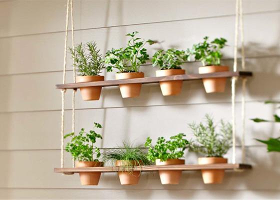 jardin-balcon-verticale-3