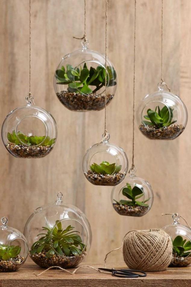 idees-creatives-jardin-dinterieur-1