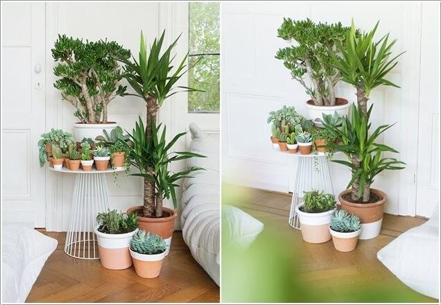 idees-creatives-jardin-dinterieur-4