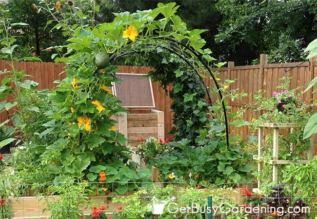 15+ Idées Géniales pour Bricoler dans Votre Jardin cet été !  15+ Idées Géniales pour Bricoler dans Votre Jardin cet été !  15+ Idées Géniales pour Bricoler dans Votre Jardin cet été !  15+ Idées Géniales pour Bricoler dans Votre Jardin cet été !  15+ Idées Géniales pour Bricoler dans Votre Jardin cet été !  15+ Idées Géniales pour Bricoler dans Votre Jardin cet été !  15+ Idées Géniales pour Bricoler dans Votre Jardin cet été !  15+ Idées Géniales pour Bricoler dans Votre Jardin cet été !  15+ Idées Géniales pour Bricoler dans Votre Jardin cet été !  15+ Idées Géniales pour Bricoler dans Votre Jardin cet été !  15+ Idées Géniales pour Bricoler dans Votre Jardin cet été !  15+ Idées Géniales pour Bricoler dans Votre Jardin cet été !  15+ Idées Géniales pour Bricoler dans Votre Jardin cet été !  15+ Idées Géniales pour Bricoler dans Votre Jardin cet été !