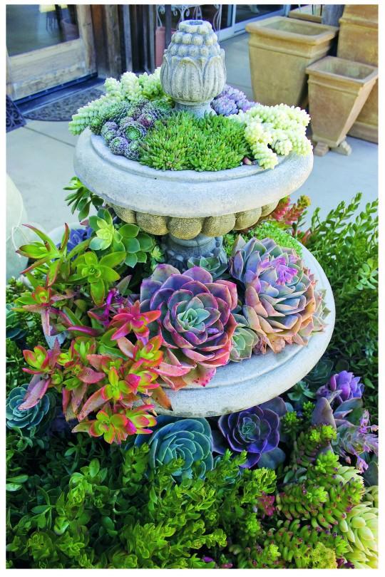 15+ Idées Géniales pour Bricoler dans Votre Jardin cet été !  15+ Idées Géniales pour Bricoler dans Votre Jardin cet été !  15+ Idées Géniales pour Bricoler dans Votre Jardin cet été !  15+ Idées Géniales pour Bricoler dans Votre Jardin cet été !