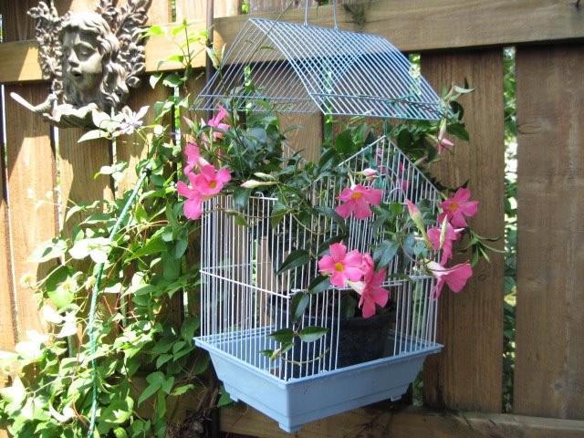 15+ Idées Géniales pour Bricoler dans Votre Jardin cet été !  15+ Idées Géniales pour Bricoler dans Votre Jardin cet été !  15+ Idées Géniales pour Bricoler dans Votre Jardin cet été !  15+ Idées Géniales pour Bricoler dans Votre Jardin cet été !  15+ Idées Géniales pour Bricoler dans Votre Jardin cet été !  15+ Idées Géniales pour Bricoler dans Votre Jardin cet été !  15+ Idées Géniales pour Bricoler dans Votre Jardin cet été !