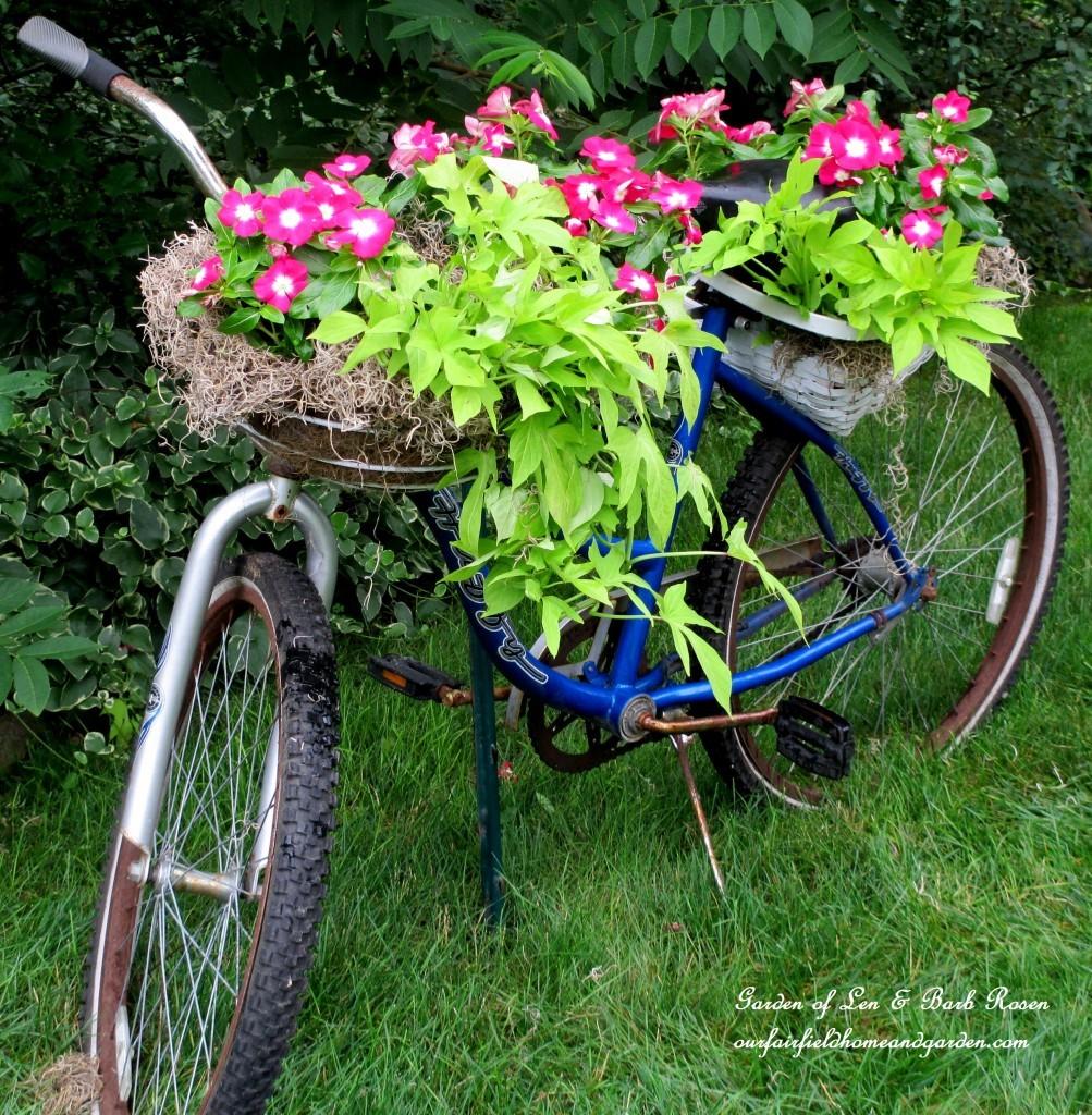 15+ Idées Géniales pour Bricoler dans Votre Jardin cet été !  15+ Idées Géniales pour Bricoler dans Votre Jardin cet été !  15+ Idées Géniales pour Bricoler dans Votre Jardin cet été !  15+ Idées Géniales pour Bricoler dans Votre Jardin cet été !  15+ Idées Géniales pour Bricoler dans Votre Jardin cet été !  15+ Idées Géniales pour Bricoler dans Votre Jardin cet été !  15+ Idées Géniales pour Bricoler dans Votre Jardin cet été !  15+ Idées Géniales pour Bricoler dans Votre Jardin cet été !  15+ Idées Géniales pour Bricoler dans Votre Jardin cet été !