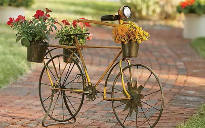 15+ Impressionnant Idées de Planteur de Vélo  15+ Impressionnant Idées de Planteur de Vélo  15+ Impressionnant Idées de Planteur de Vélo  15+ Impressionnant Idées de Planteur de Vélo  15+ Impressionnant Idées de Planteur de Vélo  15+ Impressionnant Idées de Planteur de Vélo  15+ Impressionnant Idées de Planteur de Vélo  15+ Impressionnant Idées de Planteur de Vélo  15+ Impressionnant Idées de Planteur de Vélo  15+ Impressionnant Idées de Planteur de Vélo  15+ Impressionnant Idées de Planteur de Vélo  15+ Impressionnant Idées de Planteur de Vélo  15+ Impressionnant Idées de Planteur de Vélo  15+ Impressionnant Idées de Planteur de Vélo