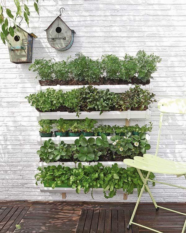 mur-vegetal-jardin-vertical-1