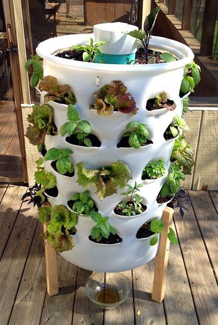 mur-vegetal-jardin-vertical-11
