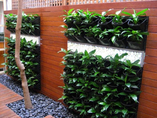 mur-vegetal-jardin-vertical-16