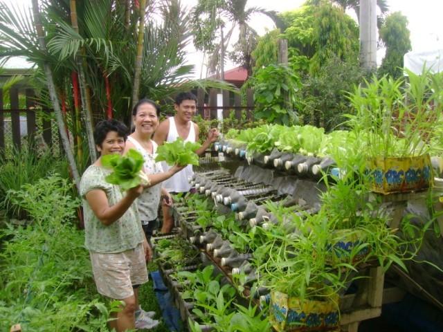 mur-vegetal-jardin-vertical-18