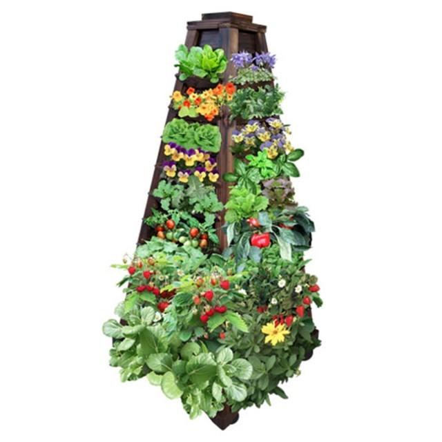 mur-vegetal-jardin-vertical-19