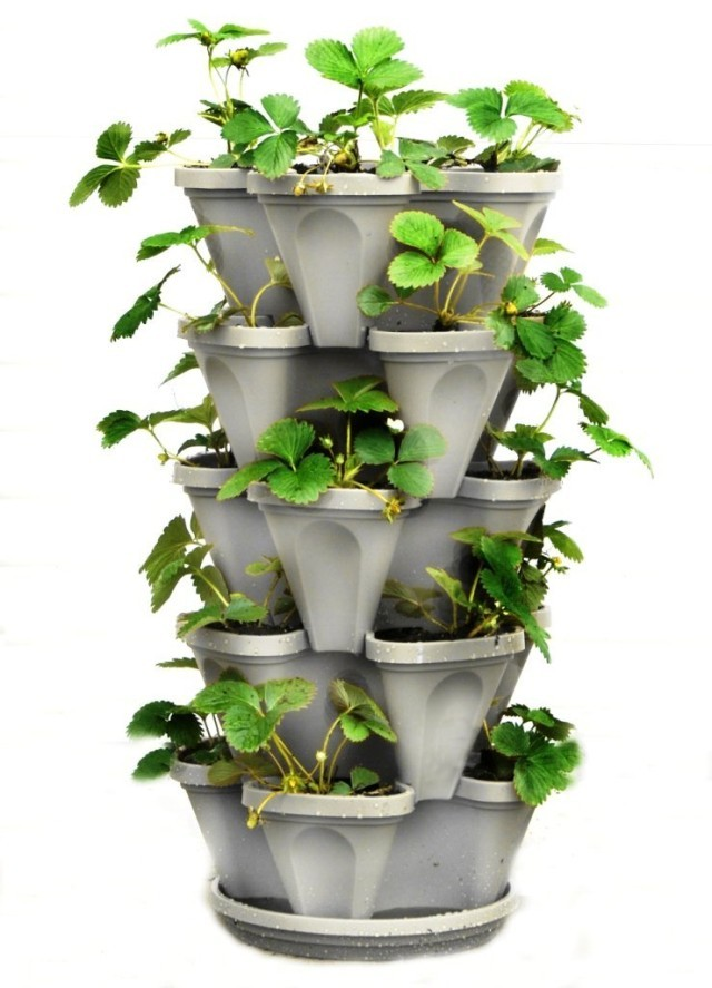 mur-vegetal-jardin-vertical-20