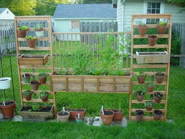 mur-vegetal-jardin-vertical-23