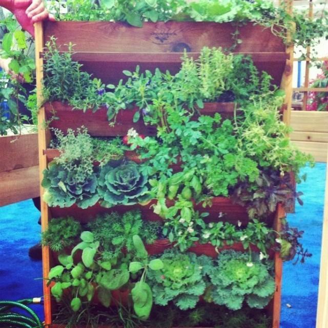 mur-vegetal-jardin-vertical-24