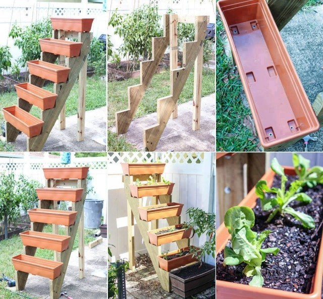 mur-vegetal-jardin-vertical-25