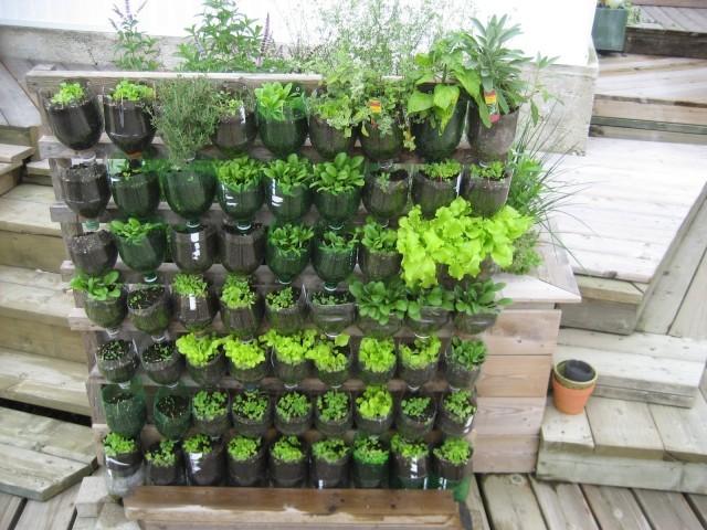 mur-vegetal-jardin-vertical-3