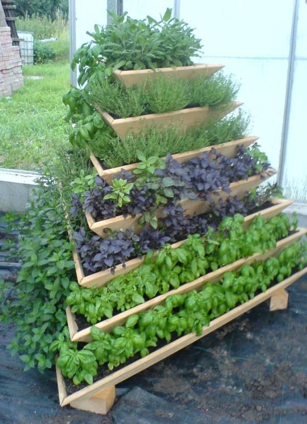 mur-vegetal-jardin-vertical-6