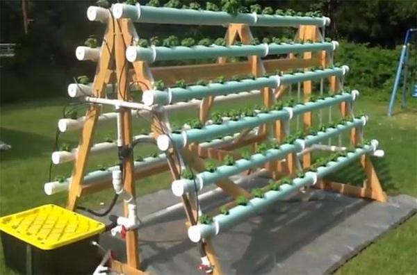 mur-vegetal-jardin-vertical-8