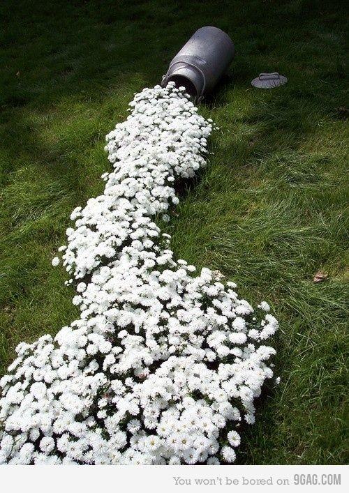 bouquets-de-fleurs-inspirants-11