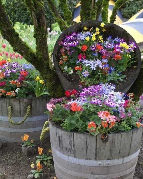 bouquets-de-fleurs-inspirants-16