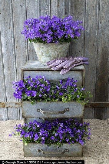 bouquets-de-fleurs-inspirants-19