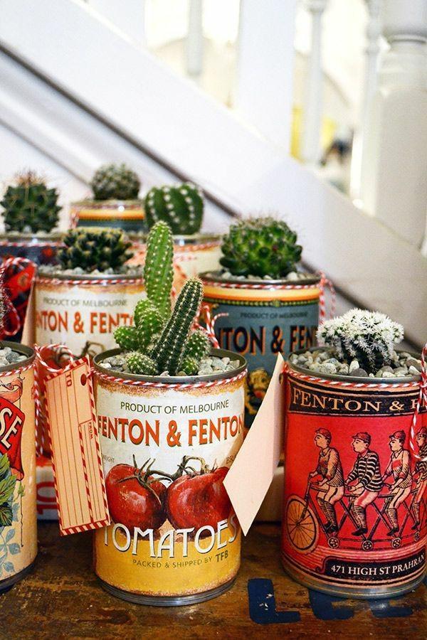 mini-cactus-jardins-15