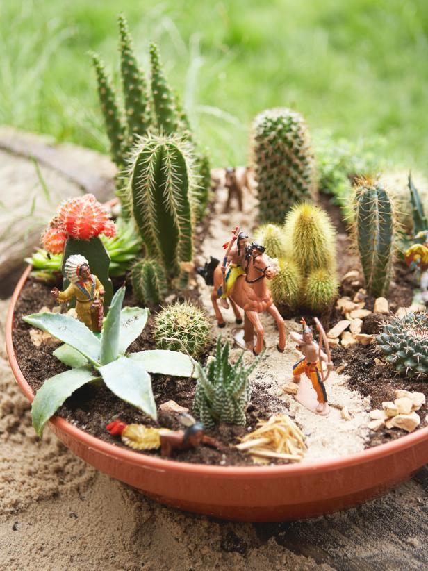 mini-cactus-jardins-2