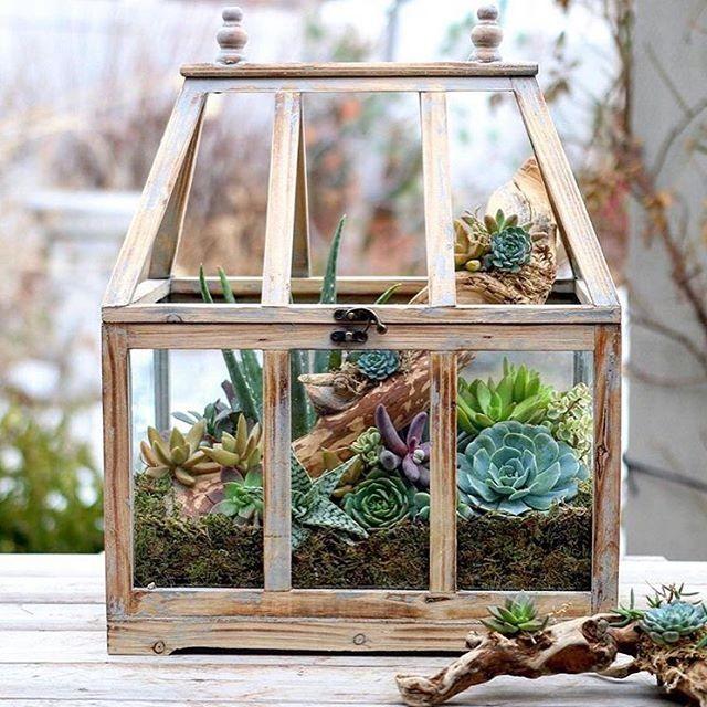 Planteurs-Succulents-15