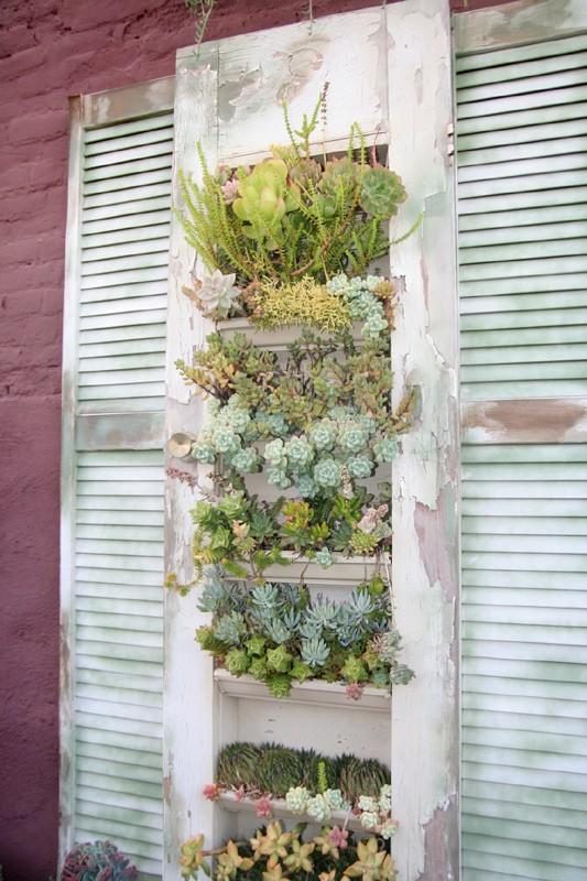 Planteurs-Succulents-17