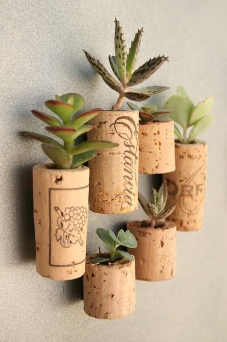 Planteurs-Succulents-3