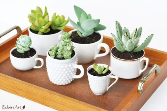 15+ Incroyables Planteurs Succulents  15+ Incroyables Planteurs Succulents  15+ Incroyables Planteurs Succulents  15+ Incroyables Planteurs Succulents  15+ Incroyables Planteurs Succulents