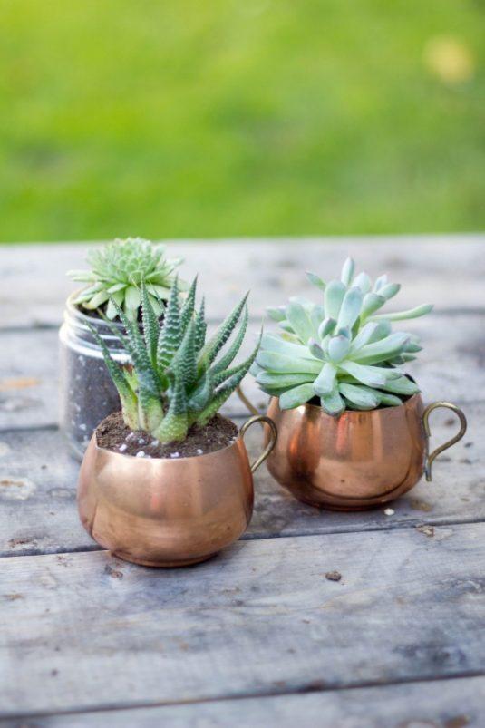 Planteurs-Succulents-9