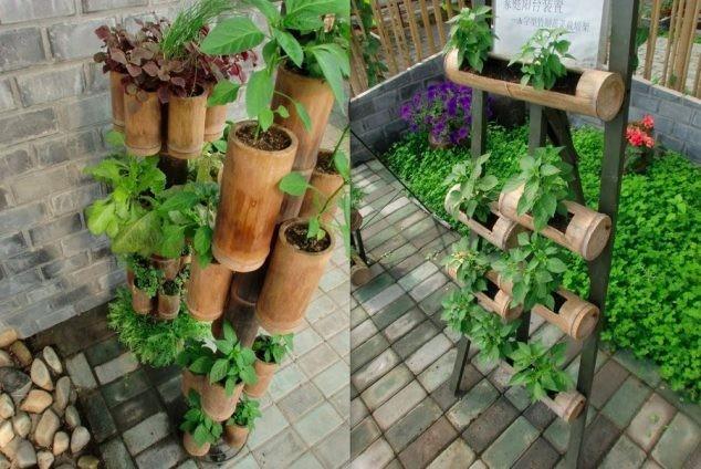 bambou-jardin-10
