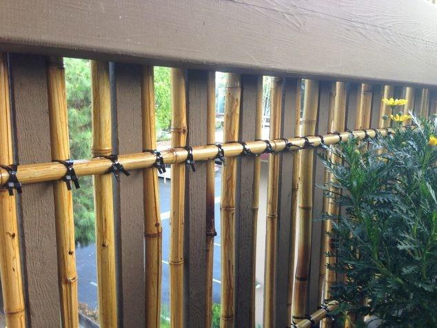 bambou-jardin-3