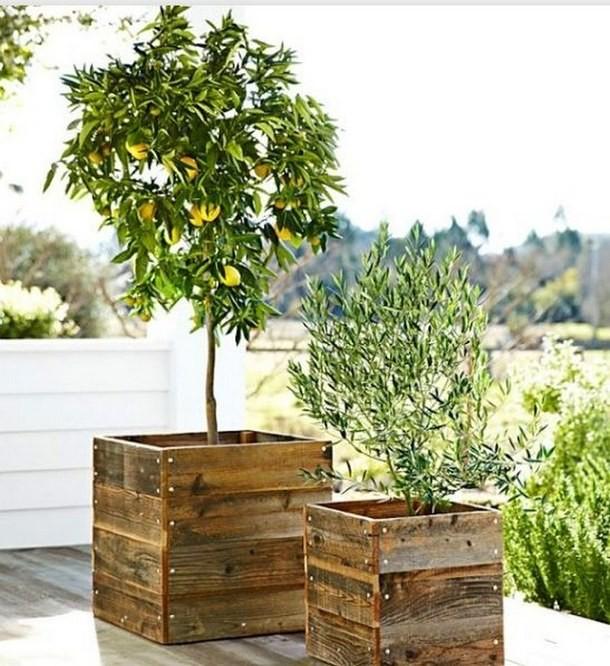decorer-le-jardin-avec-des-cagettes-en-bois-15